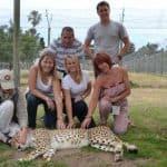 Optimized-Cheetah Outreach